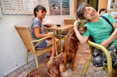 ネルハのカフェで犬と戯れる-IMG_0361