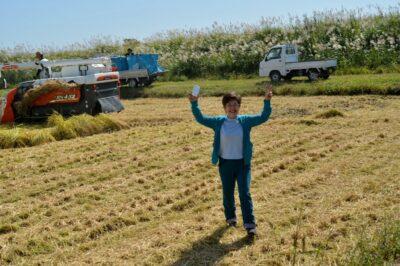 稲刈り初体験-i