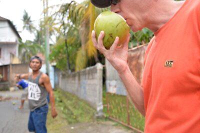 道路上のココナッツを伐採-i