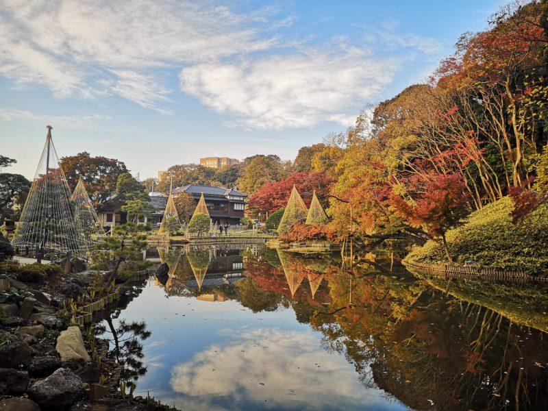 肥後細川庭園の紅葉-1