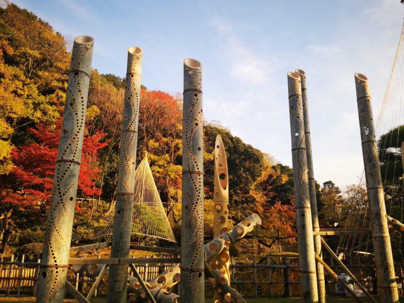 肥後細川庭園の紅葉と竹を使ったひごあかり