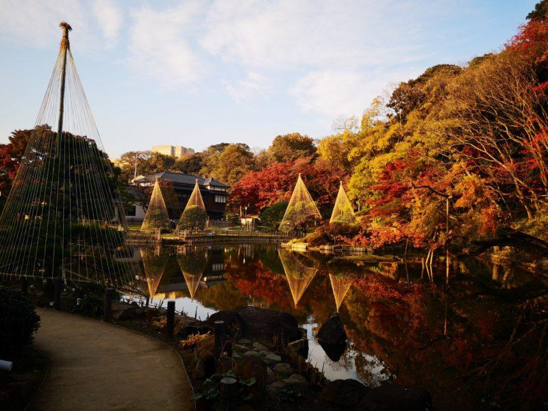 肥後細川庭園の紅葉-2
