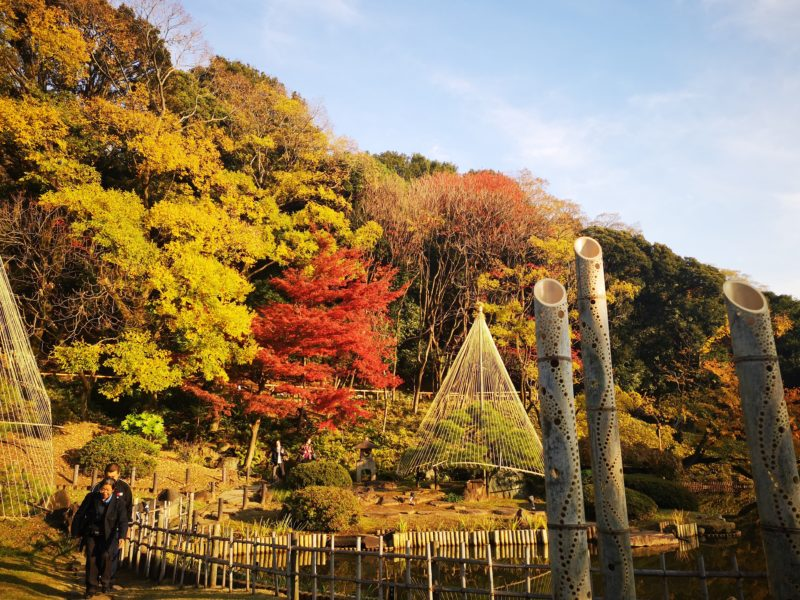 肥後細川庭園の紅葉