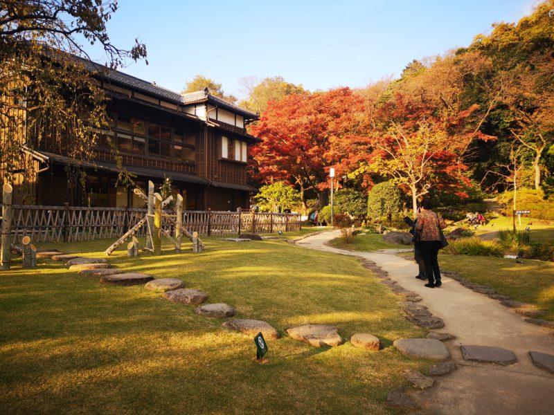 肥後細川庭園の紅葉と松聲閣