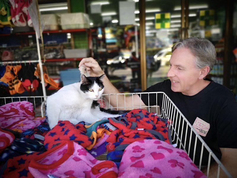 猫ちゃんのベッドは商品並べたワゴン